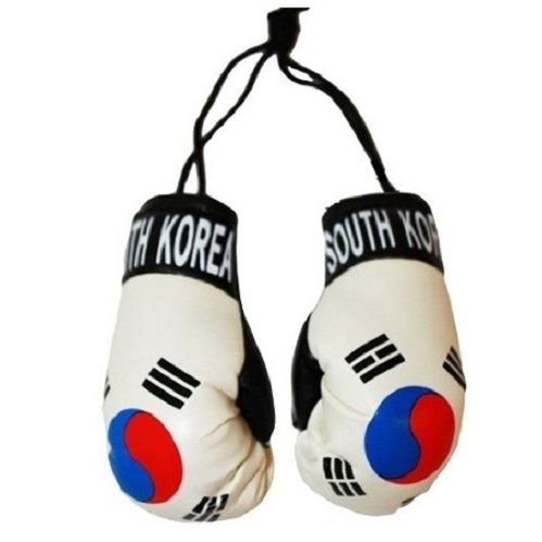 how to buy boxing gloves online
